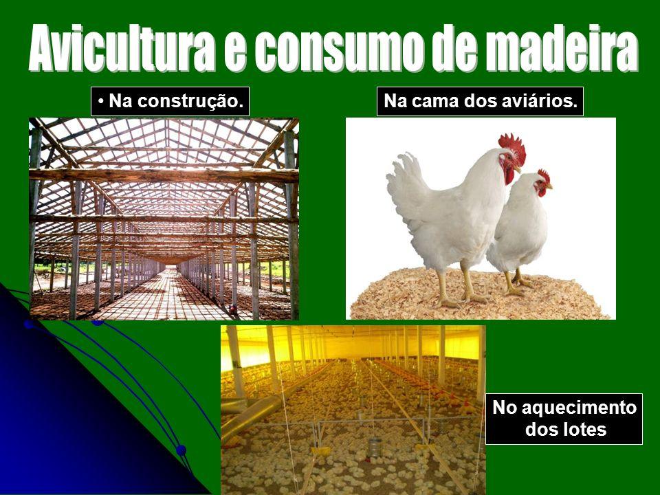 Avicultura e consumo de madeira