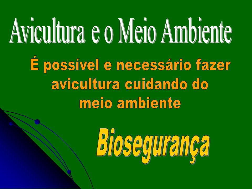 Avicultura e o Meio Ambiente