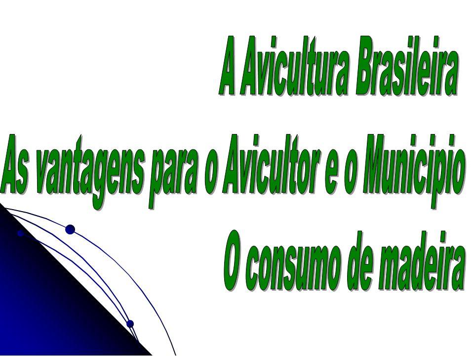 A Avicultura Brasileira