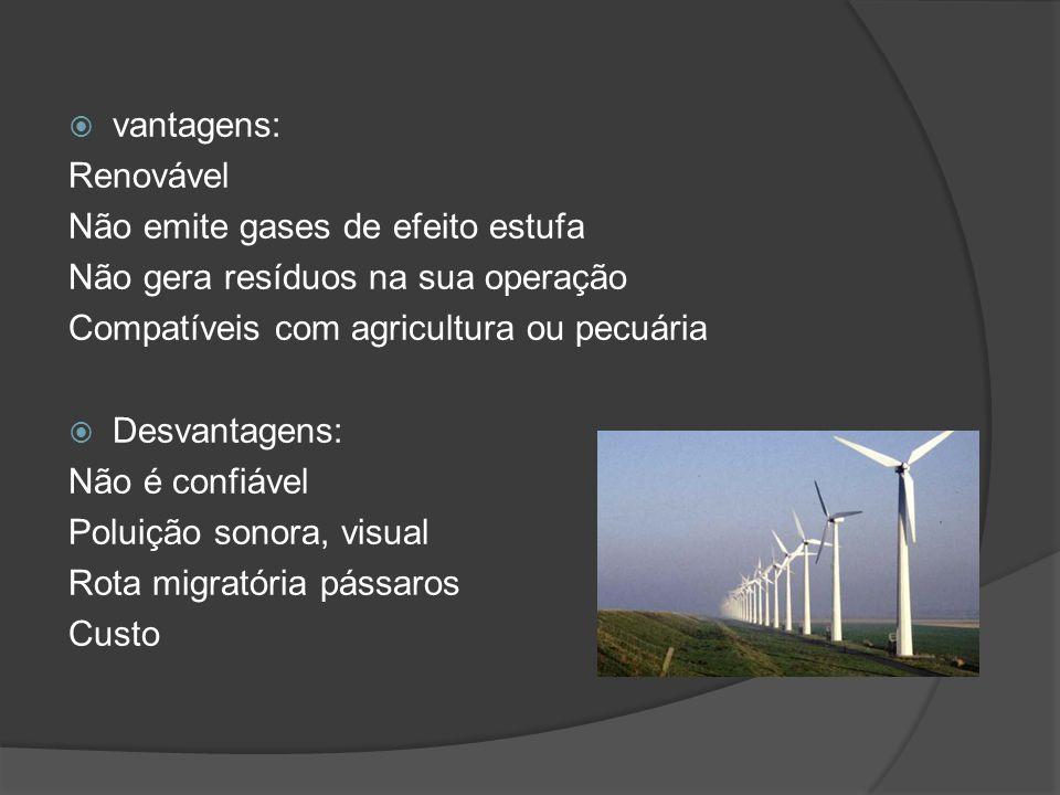 vantagens: Renovável. Não emite gases de efeito estufa. Não gera resíduos na sua operação. Compatíveis com agricultura ou pecuária.