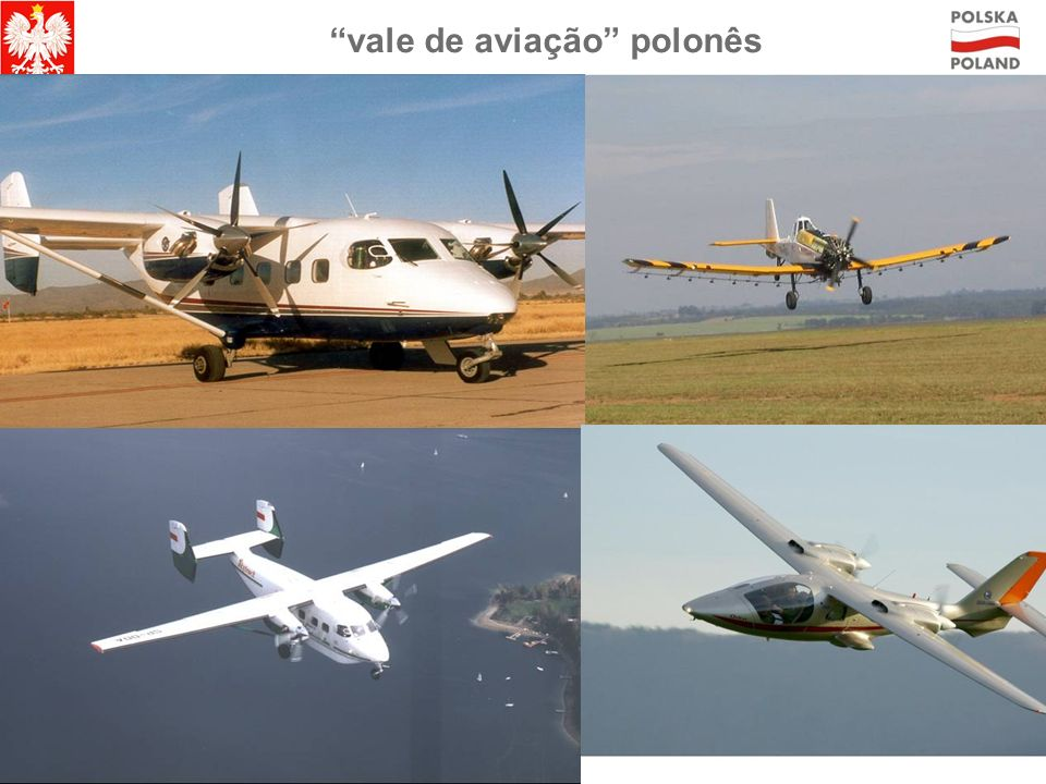 vale de aviação polonês