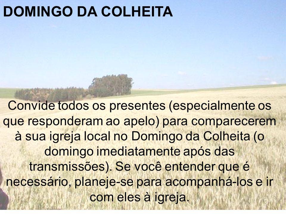 DOMINGO DA COLHEITA