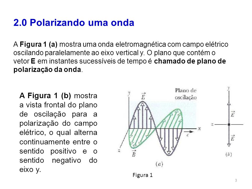 2.0 Polarizando uma onda