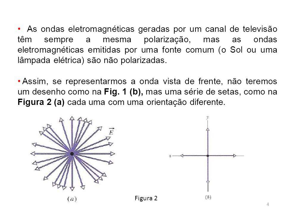 As ondas eletromagnéticas geradas por um canal de televisão têm sempre a mesma polarização, mas as ondas eletromagnéticas emitidas por uma fonte comum (o Sol ou uma lâmpada elétrica) são não polarizadas.