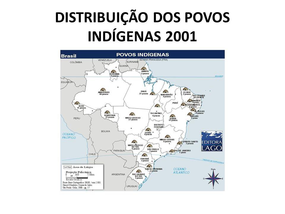 DISTRIBUIÇÃO DOS POVOS INDÍGENAS 2001