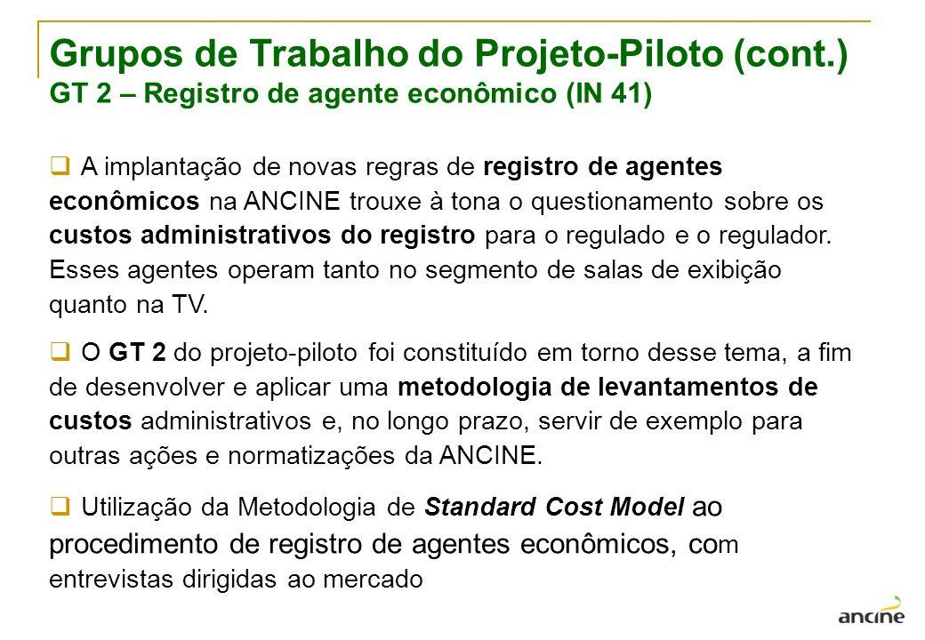 Grupos de Trabalho do Projeto-Piloto (cont.)