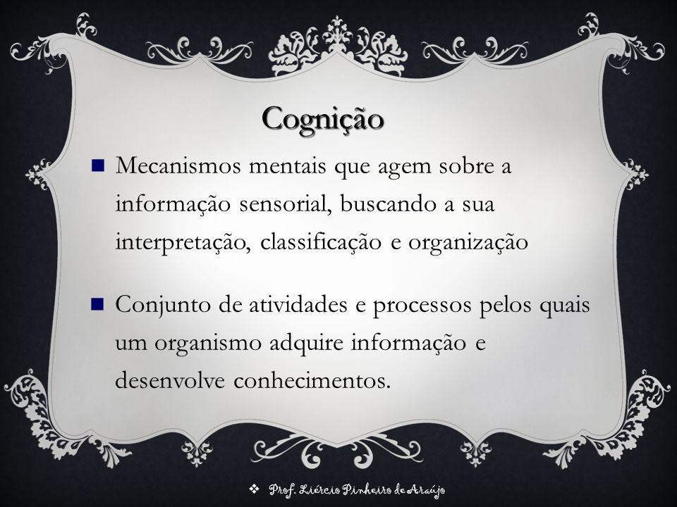 Cognição Mecanismos mentais que agem sobre a informação sensorial, buscando a sua interpretação, classificação e organização.
