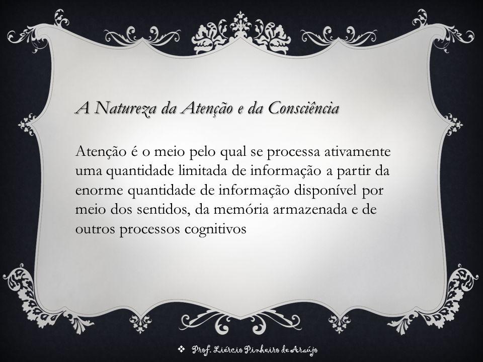 A Natureza da Atenção e da Consciência