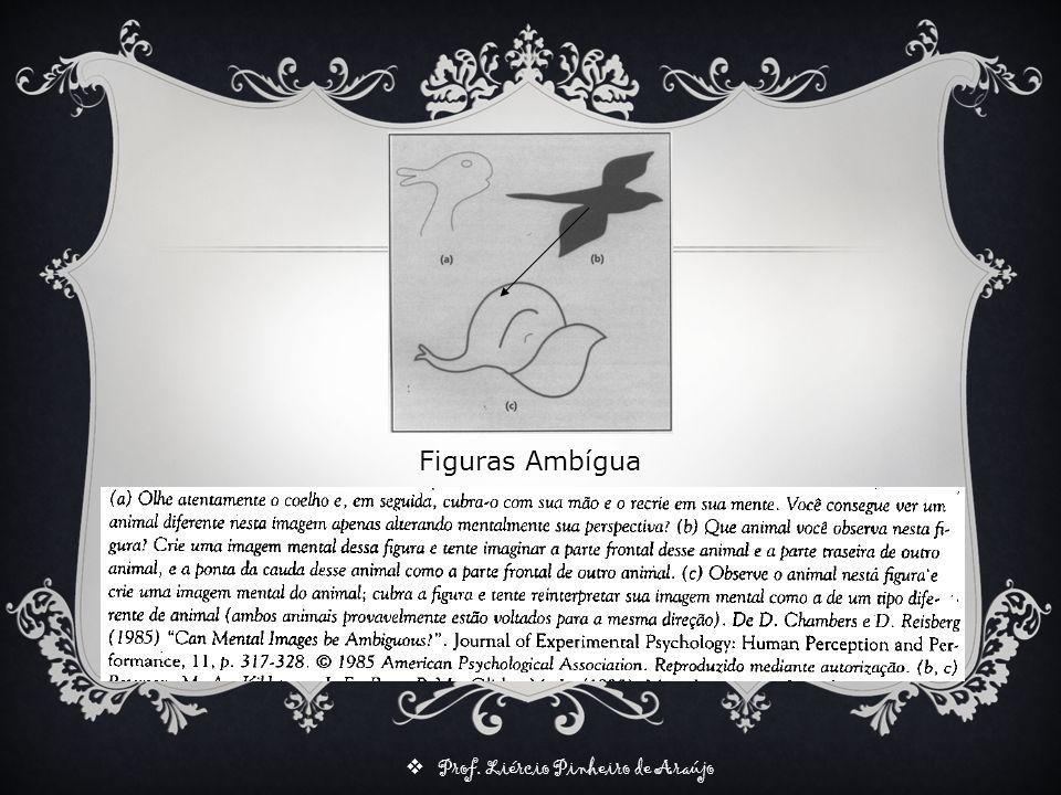 Figuras Ambígua