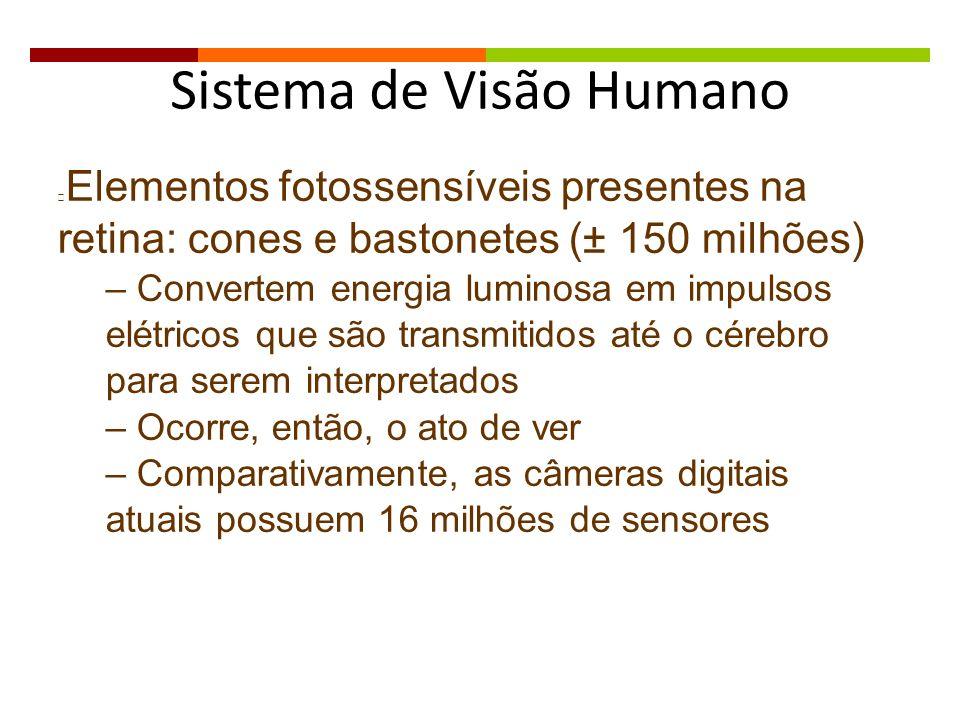 Sistema de Visão Humano