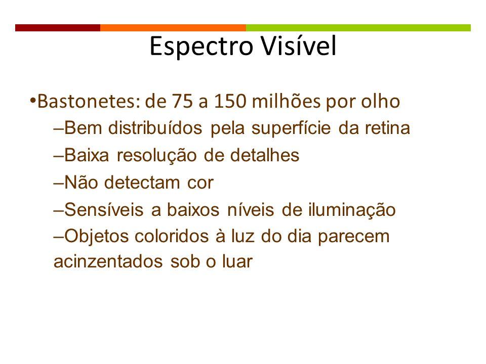 Espectro Visível Bastonetes: de 75 a 150 milhões por olho