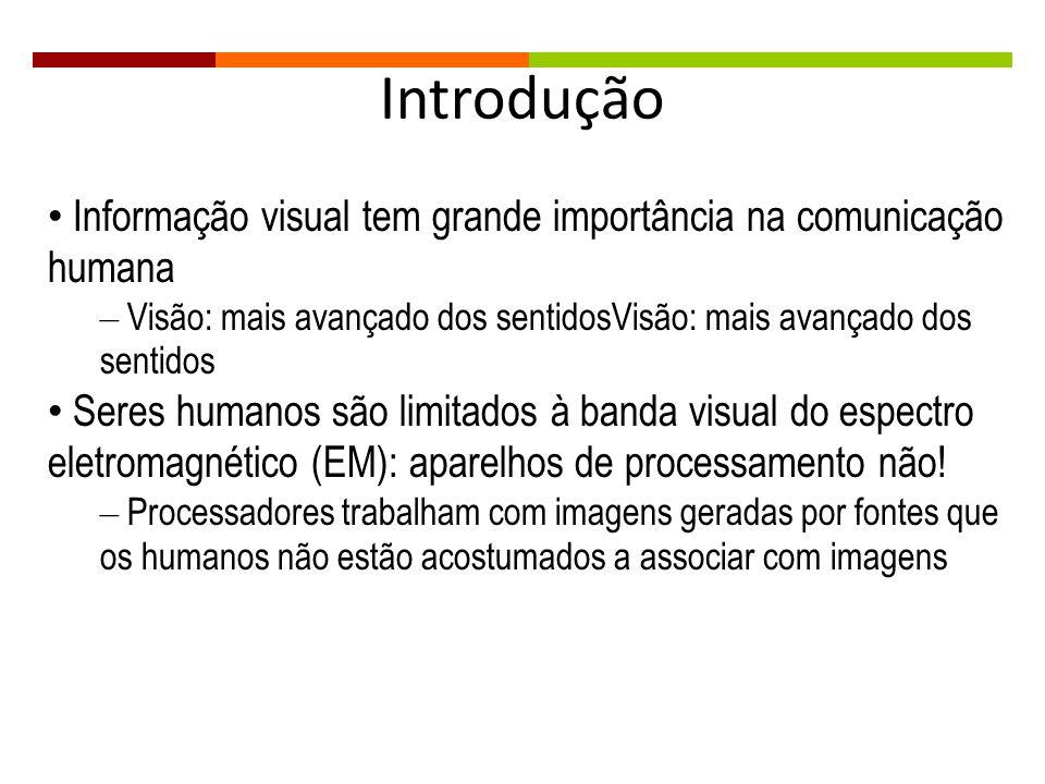 Introdução Informação visual tem grande importância na comunicação humana. Visão: mais avançado dos sentidosVisão: mais avançado dos sentidos.