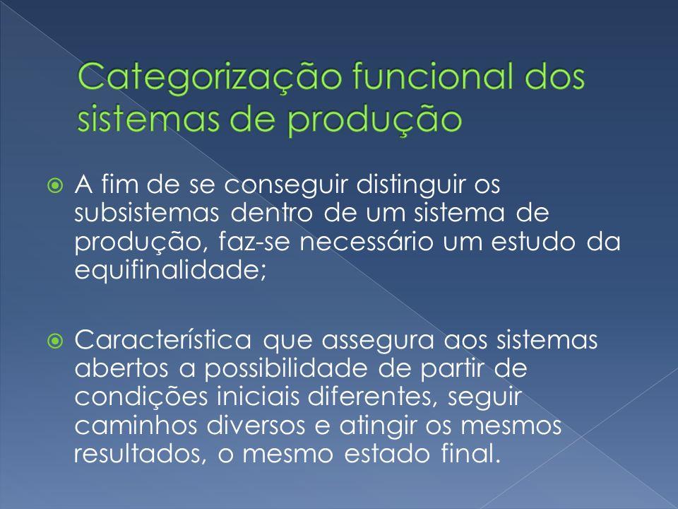 Categorização funcional dos sistemas de produção
