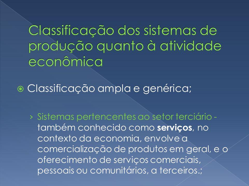 Classificação dos sistemas de produção quanto à atividade econômica