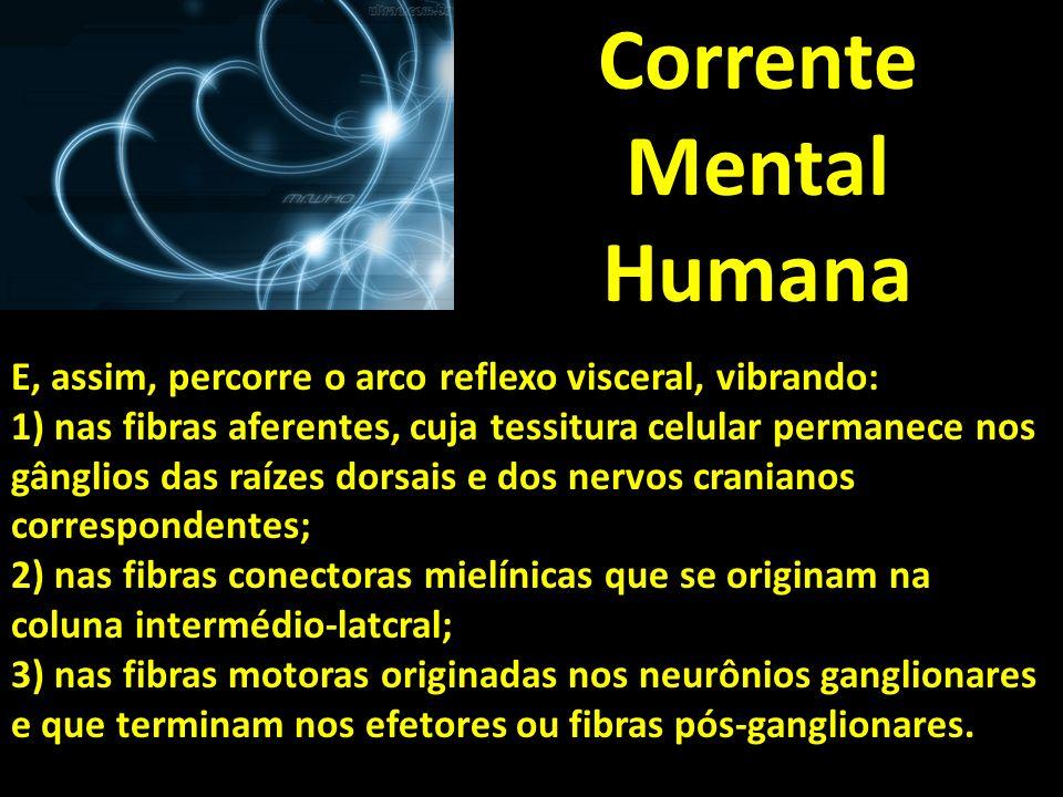 Corrente Mental Humana