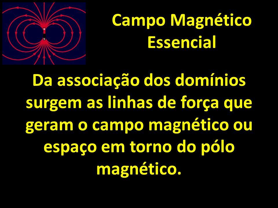 Campo Magnético Essencial