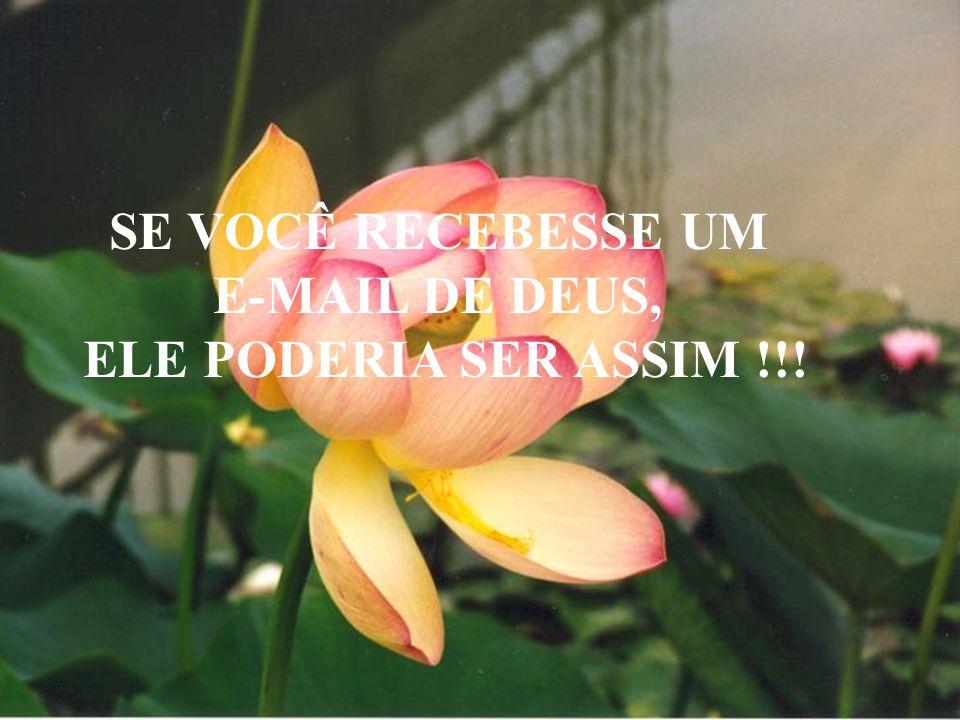 SE VOCÊ RECEBESSE UM E-MAIL DE DEUS, ELE PODERIA SER ASSIM !!!