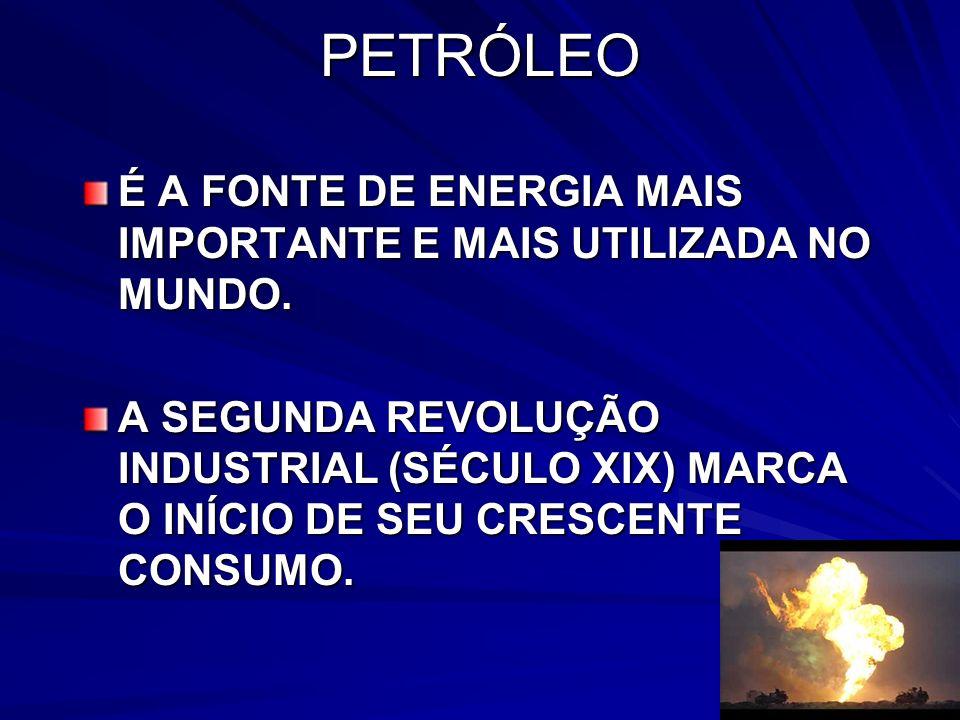 PETRÓLEO É A FONTE DE ENERGIA MAIS IMPORTANTE E MAIS UTILIZADA NO MUNDO.