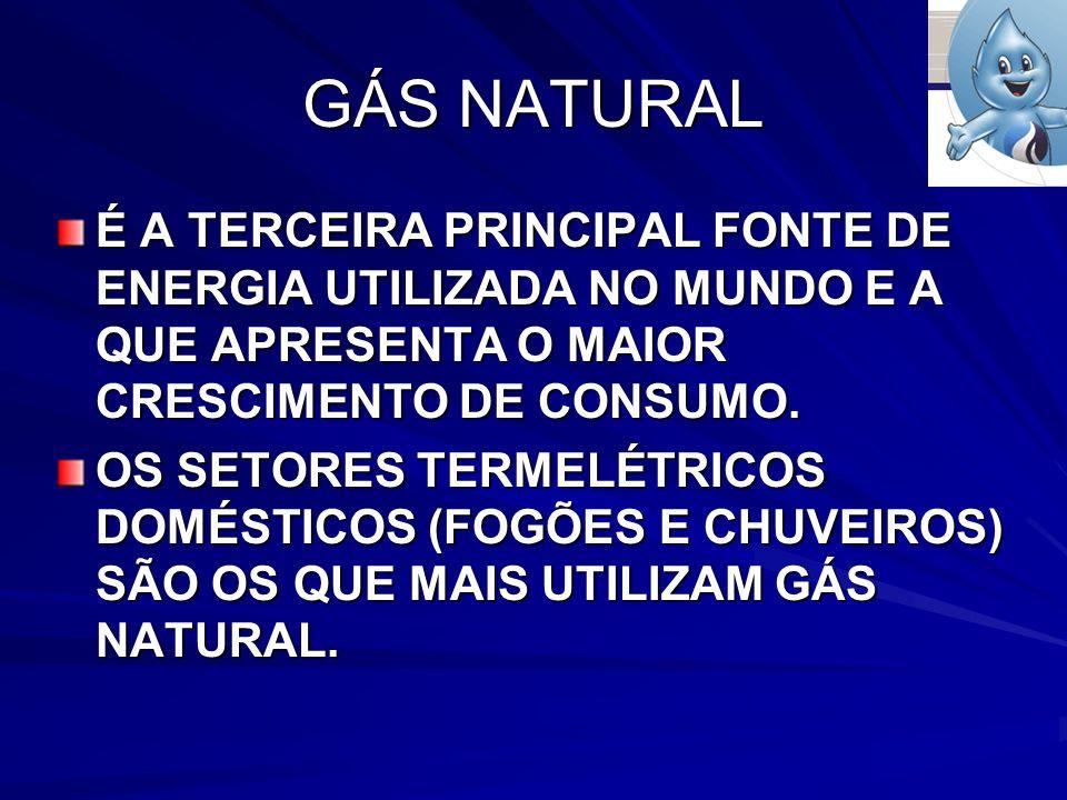 GÁS NATURAL É A TERCEIRA PRINCIPAL FONTE DE ENERGIA UTILIZADA NO MUNDO E A QUE APRESENTA O MAIOR CRESCIMENTO DE CONSUMO.