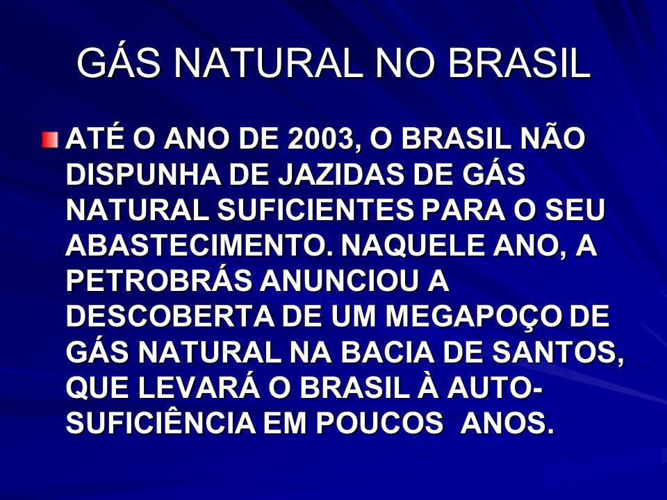 GÁS NATURAL NO BRASIL