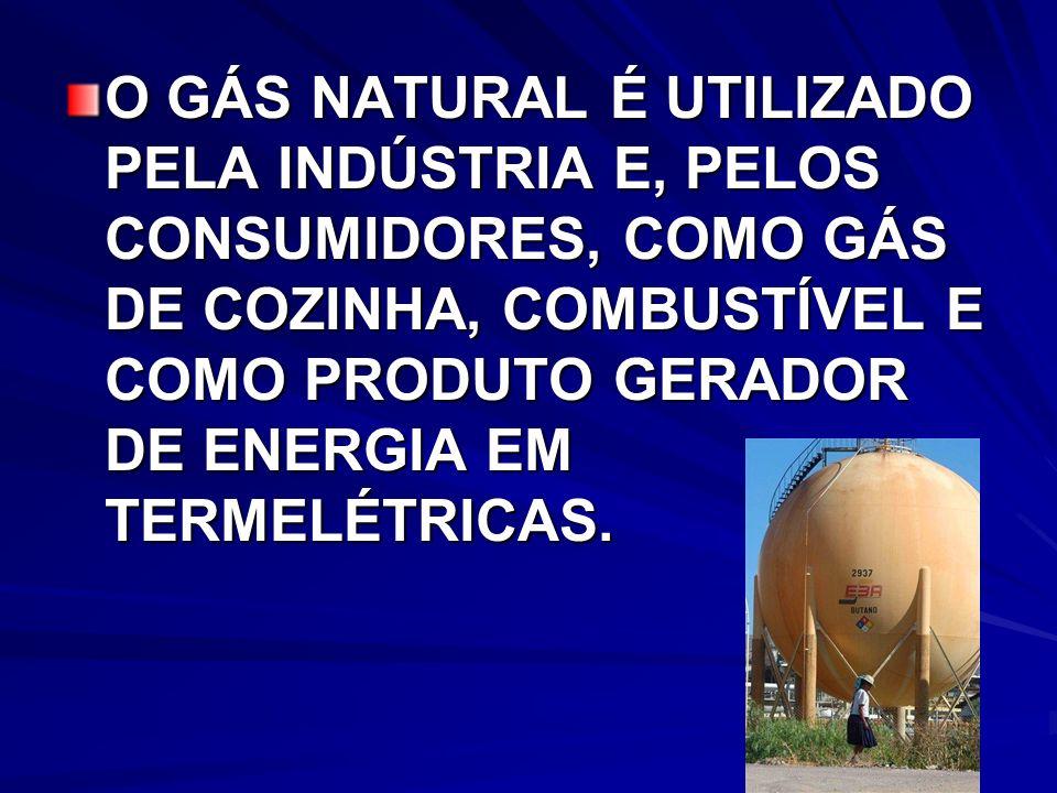 O GÁS NATURAL É UTILIZADO PELA INDÚSTRIA E, PELOS CONSUMIDORES, COMO GÁS DE COZINHA, COMBUSTÍVEL E COMO PRODUTO GERADOR DE ENERGIA EM TERMELÉTRICAS.