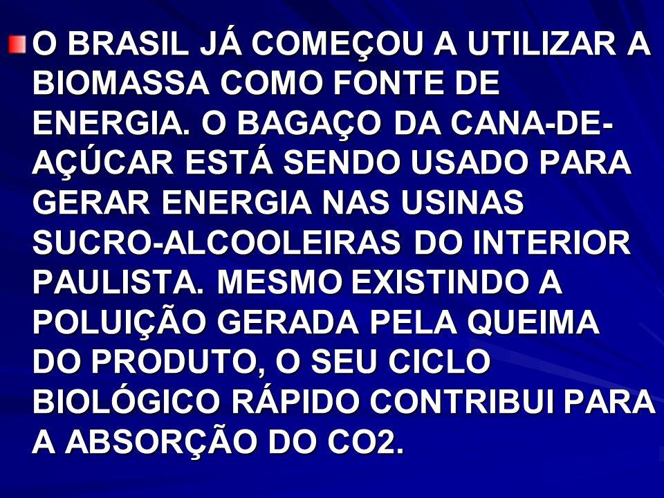 O BRASIL JÁ COMEÇOU A UTILIZAR A BIOMASSA COMO FONTE DE ENERGIA