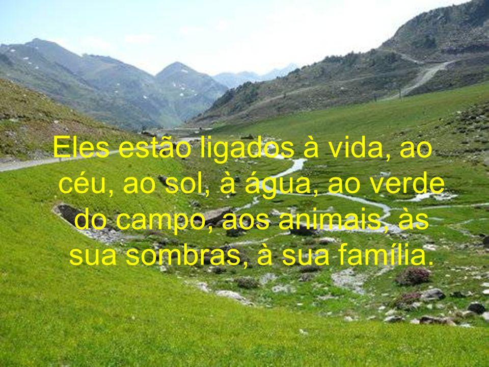 Eles estão ligados à vida, ao céu, ao sol, à água, ao verde do campo, aos animais, às sua sombras, à sua família.
