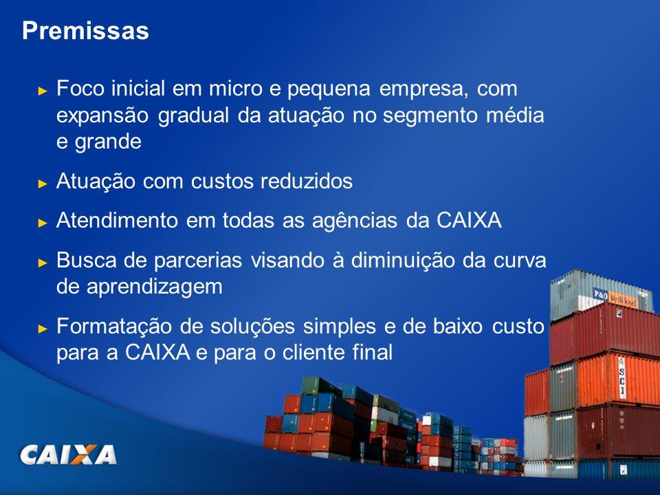 Premissas Foco inicial em micro e pequena empresa, com expansão gradual da atuação no segmento média e grande.