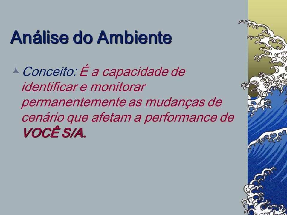 Análise do Ambiente Conceito: É a capacidade de identificar e monitorar permanentemente as mudanças de cenário que afetam a performance de VOCÊ S/A.