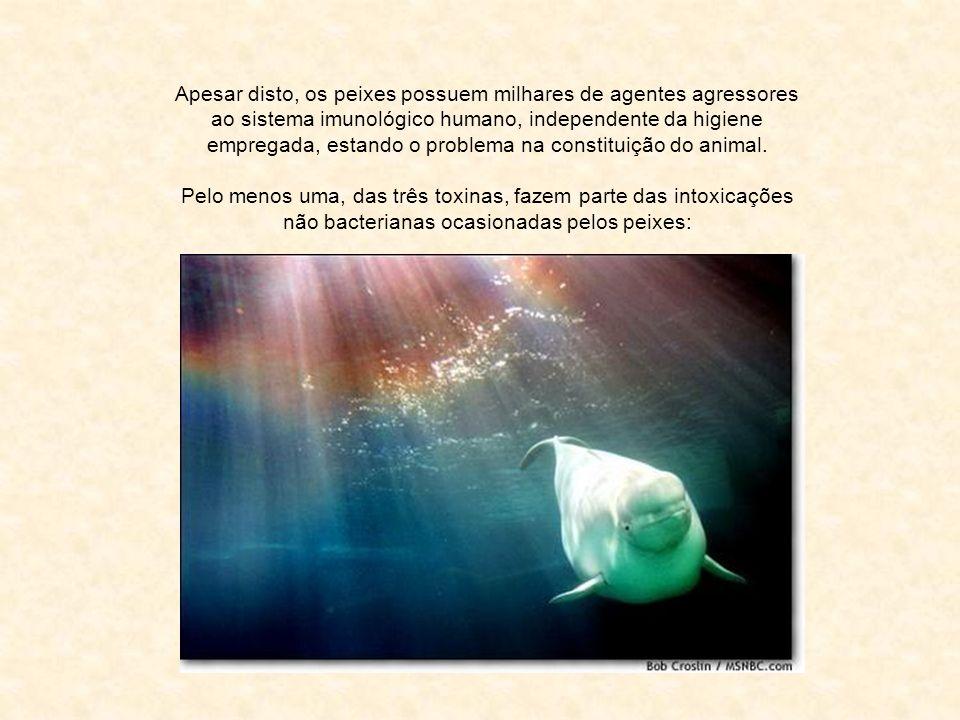 Apesar disto, os peixes possuem milhares de agentes agressores ao sistema imunológico humano, independente da higiene empregada, estando o problema na constituição do animal.