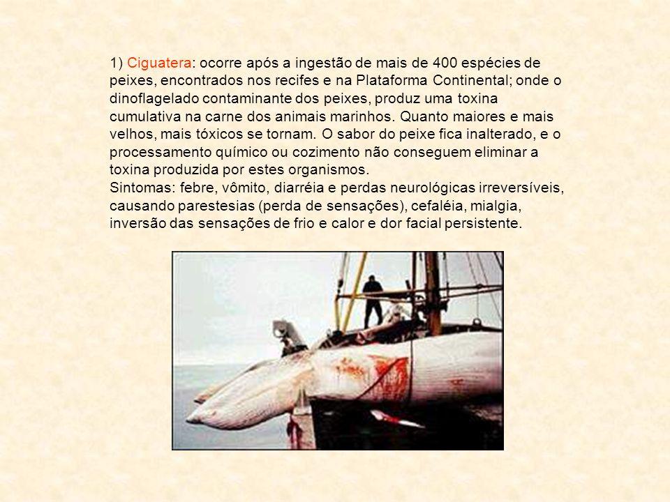 1) Ciguatera: ocorre após a ingestão de mais de 400 espécies de peixes, encontrados nos recifes e na Plataforma Continental; onde o dinoflagelado contaminante dos peixes, produz uma toxina cumulativa na carne dos animais marinhos. Quanto maiores e mais velhos, mais tóxicos se tornam. O sabor do peixe fica inalterado, e o processamento químico ou cozimento não conseguem eliminar a toxina produzida por estes organismos.