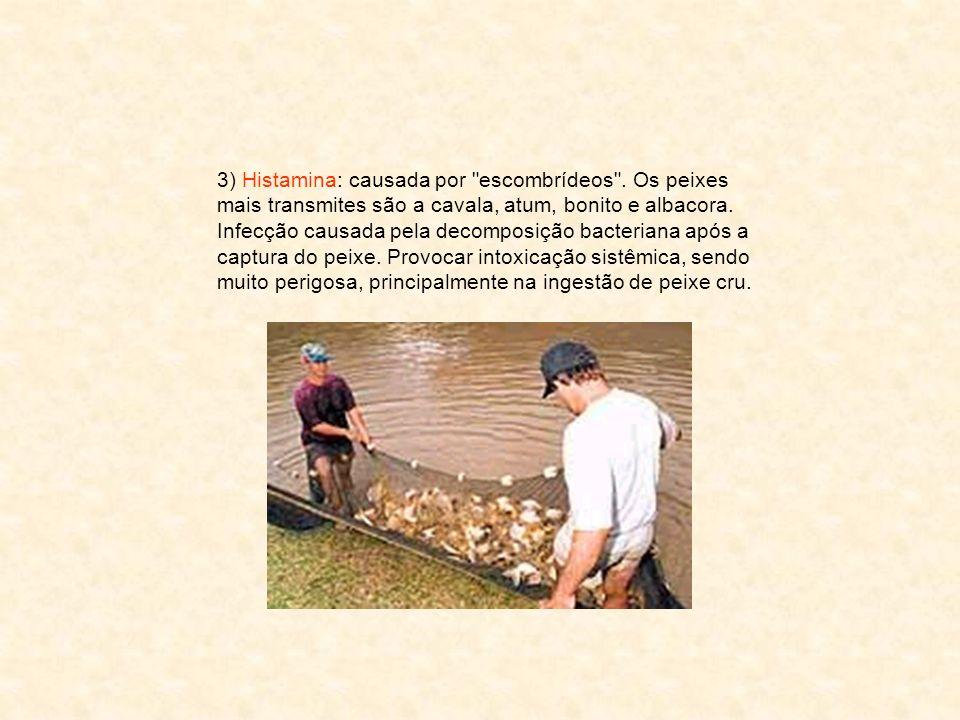 3) Histamina: causada por escombrídeos