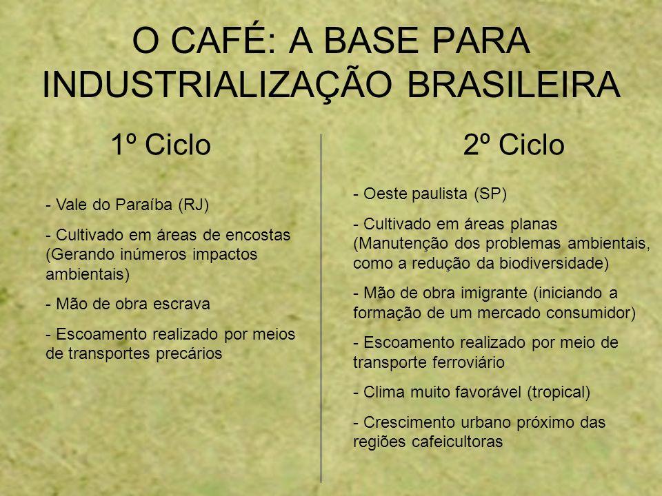 O CAFÉ: A BASE PARA INDUSTRIALIZAÇÃO BRASILEIRA