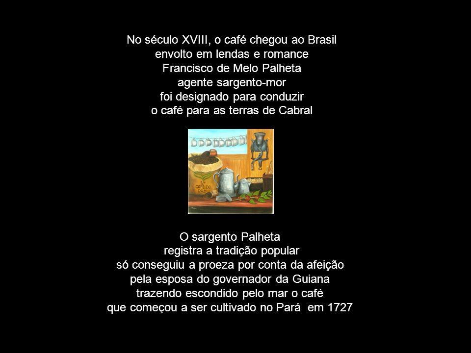 No século XVIII, o café chegou ao Brasil envolto em lendas e romance