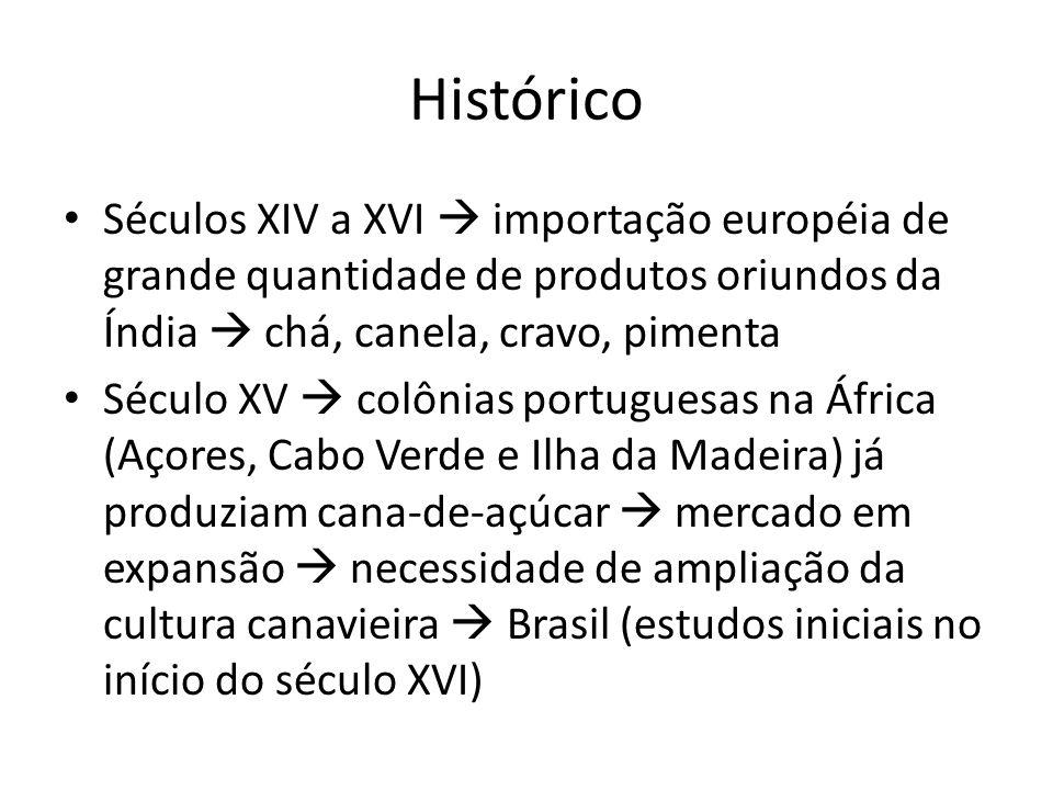 Histórico Séculos XIV a XVI  importação européia de grande quantidade de produtos oriundos da Índia  chá, canela, cravo, pimenta.
