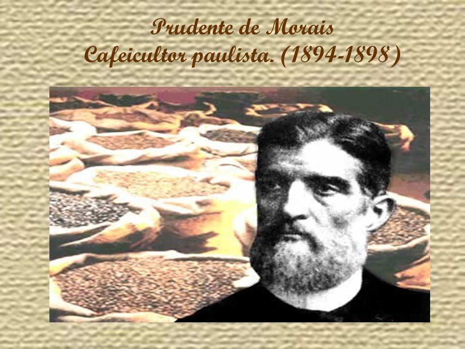 Cafeicultor paulista. (1894-1898)