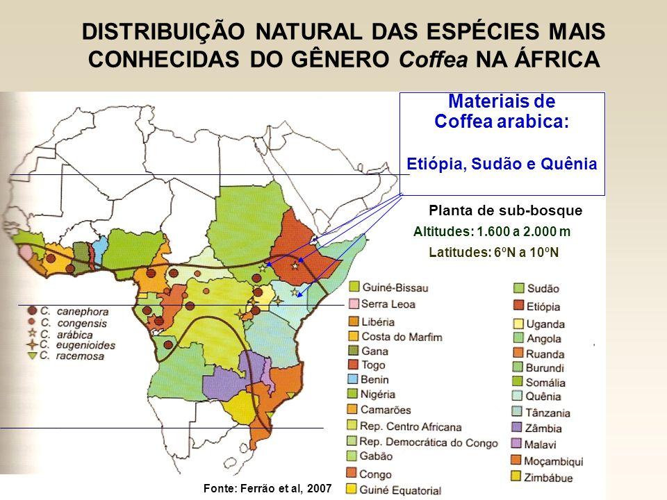 DISTRIBUIÇÃO NATURAL DAS ESPÉCIES MAIS CONHECIDAS DO GÊNERO Coffea NA ÁFRICA