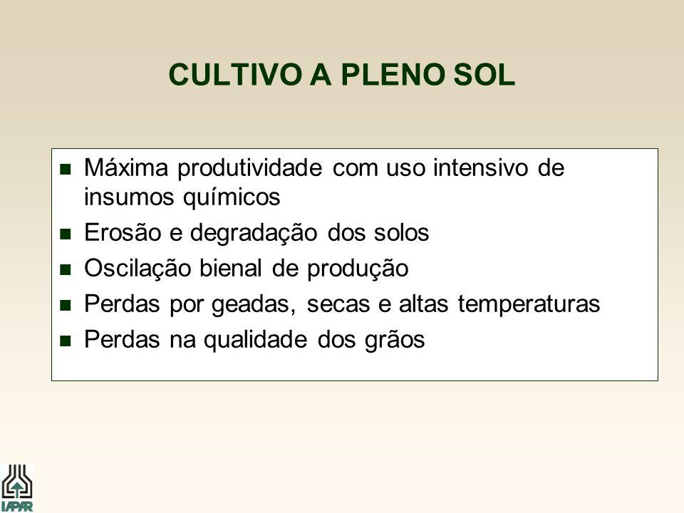 CULTIVO A PLENO SOL Máxima produtividade com uso intensivo de insumos químicos. Erosão e degradação dos solos.