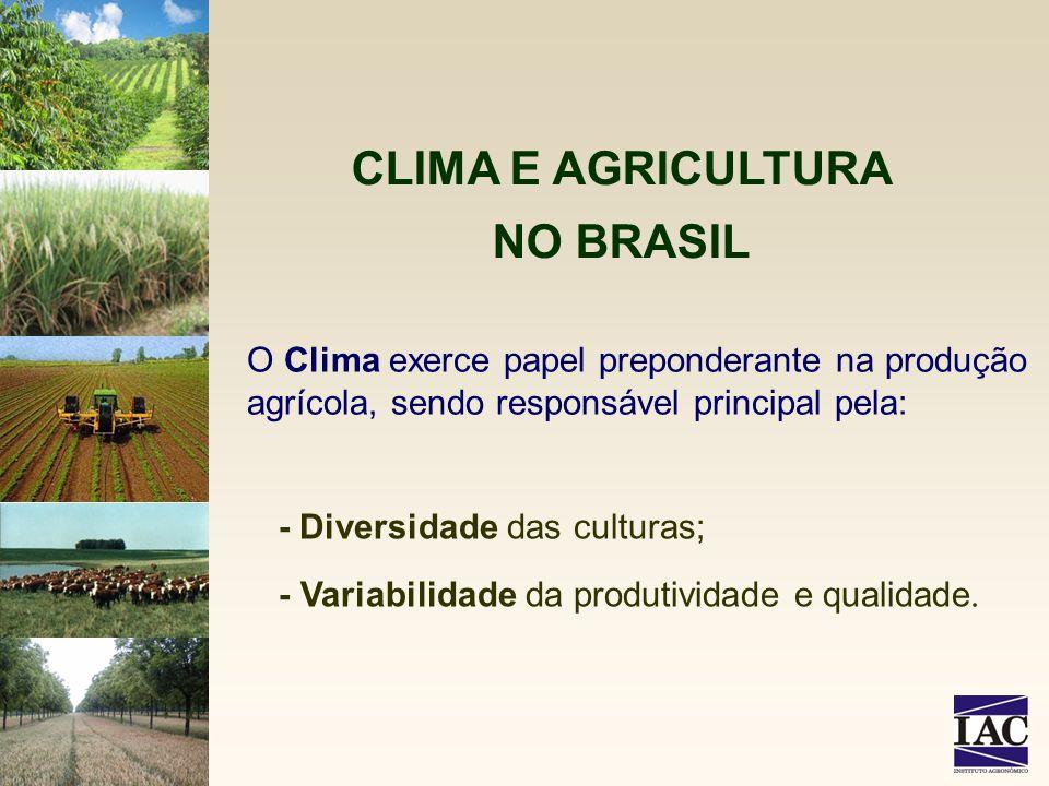 CLIMA E AGRICULTURA NO BRASIL