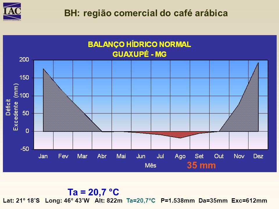 BH: região comercial do café arábica