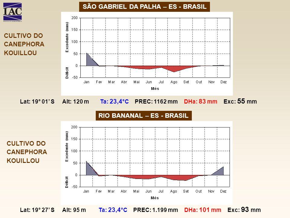 SÃO GABRIEL DA PALHA – ES - BRASIL RIO BANANAL – ES - BRASIL