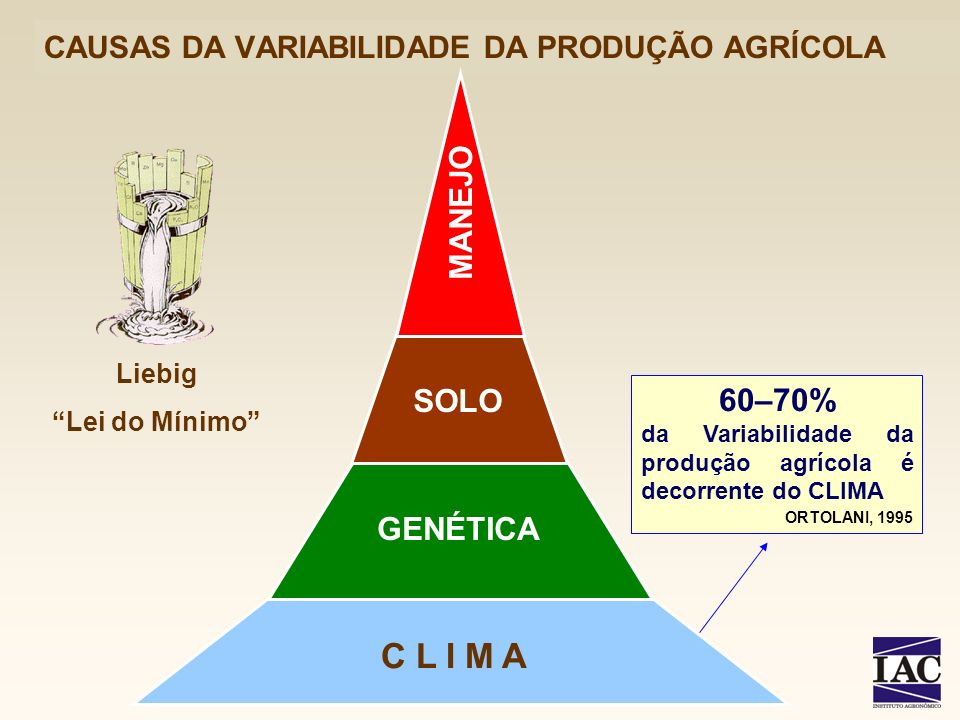 CAUSAS DA VARIABILIDADE DA PRODUÇÃO AGRÍCOLA