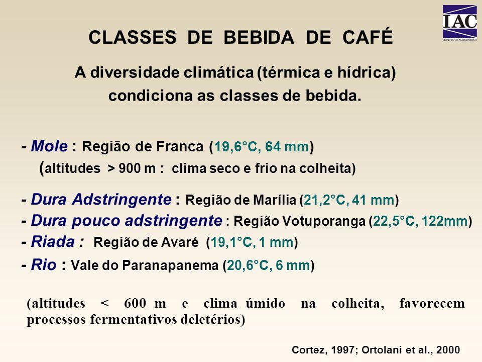 CLASSES DE BEBIDA DE CAFÉ