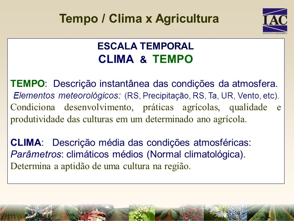 Tempo / Clima x Agricultura