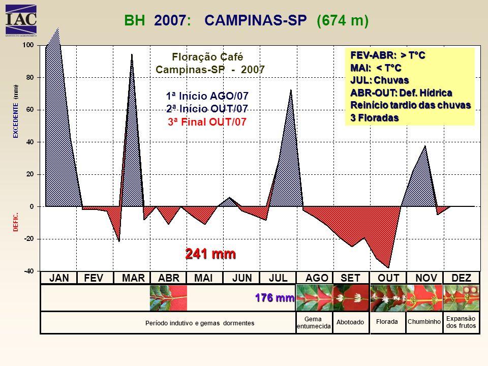 BH 2007: CAMPINAS-SP (674 m) FEV-ABR: > T°C. MAI: < T°C. JUL: Chuvas. ABR-OUT: Def. Hídrica.