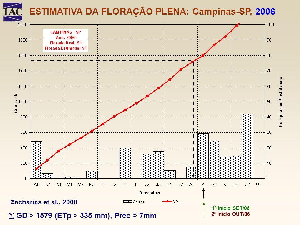 ESTIMATIVA DA FLORAÇÃO PLENA: Campinas-SP, 2006