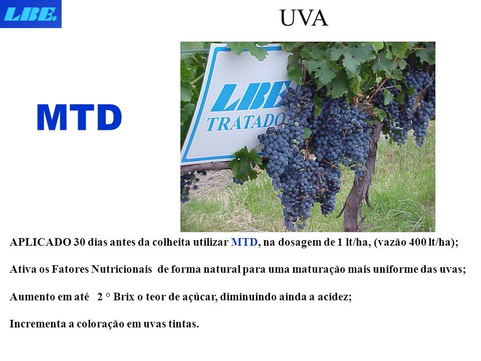 UVA MTD. APLICADO 30 dias antes da colheita utilizar MTD, na dosagem de 1 lt/ha, (vazão 400 lt/ha);
