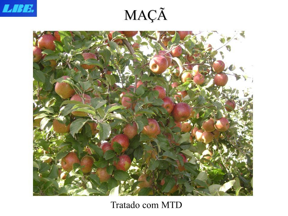 MAÇÃ Tratado com MTD