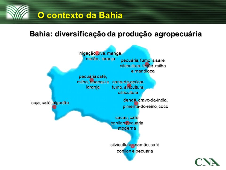 Bahia: diversificação da produção agropecuária