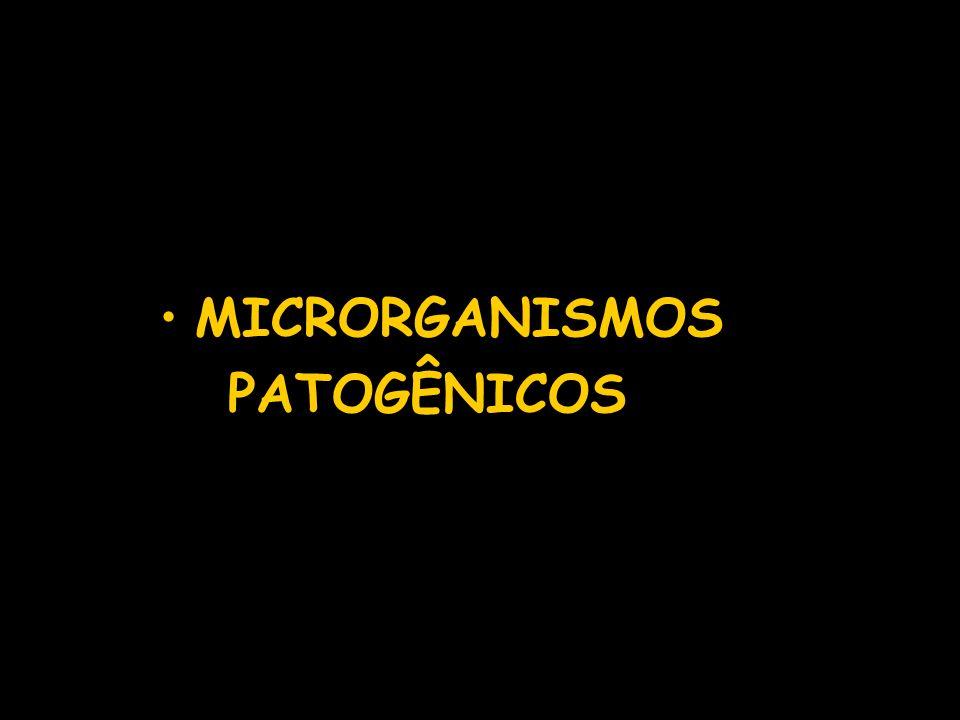 MICRORGANISMOS PATOGÊNICOS